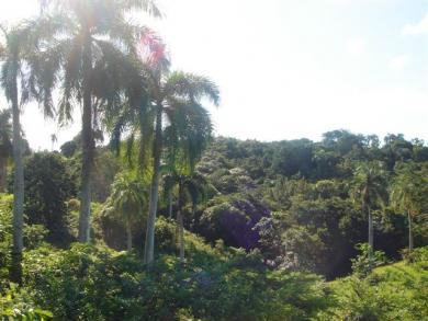 Development Land for sale between Sosua and Cabarete