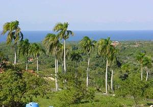 Oceanview Lot in Exclusive Gated Community