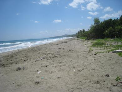 Ideal Beachfront Property for Developer or Large Villa