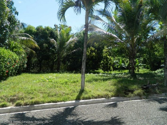 Nice lot in gated community