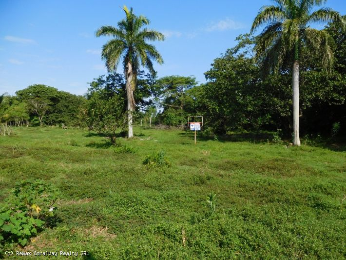 Large piece of land with a total of 7,868 M2