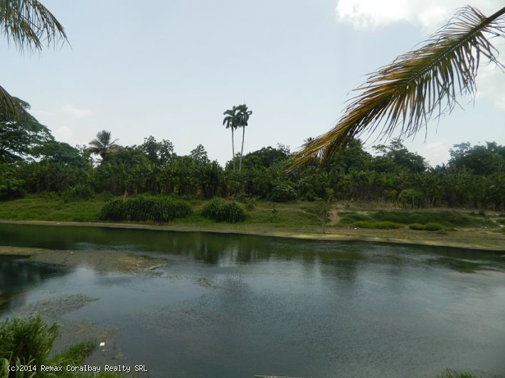 Beautiful lot at the riverbank of Rio Yasica